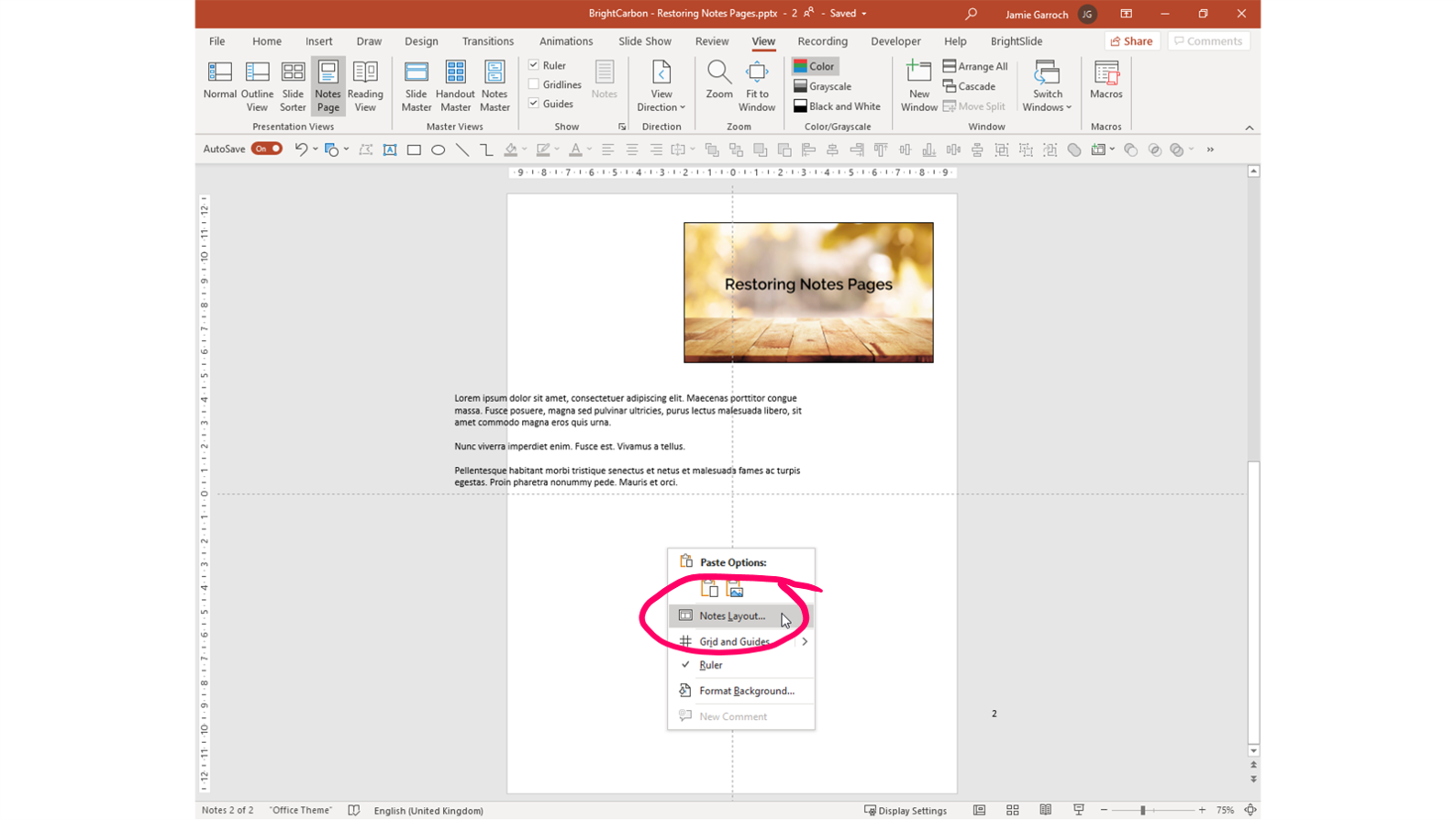 Screenshot of a PowerPoint Notes Page with 'Notes Layout' selected