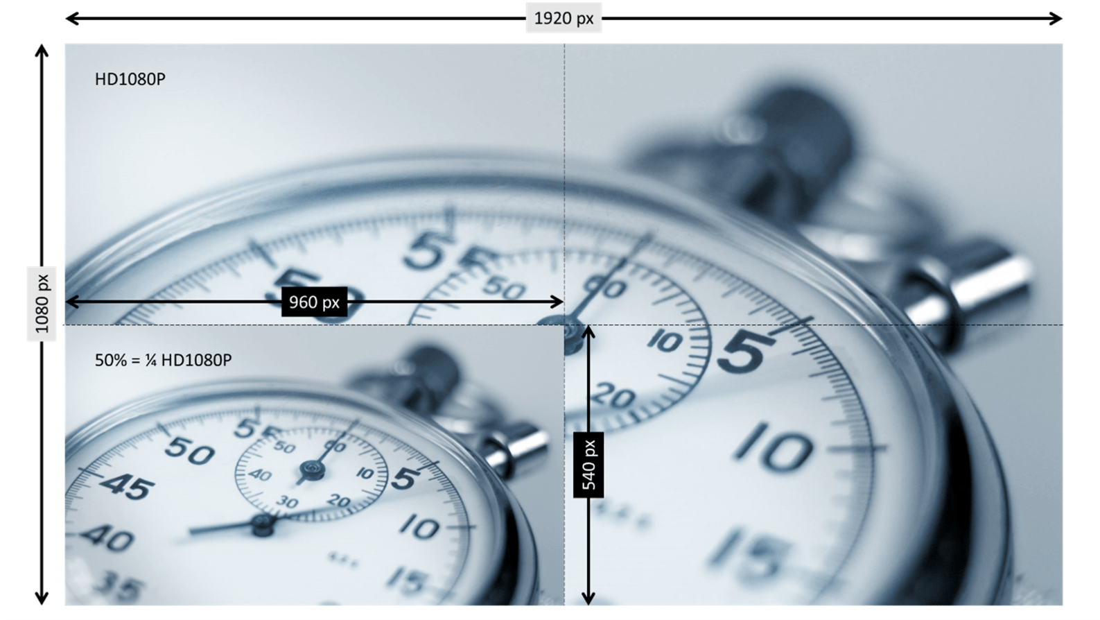 screenshot of two pictures inserted into PowerPoint